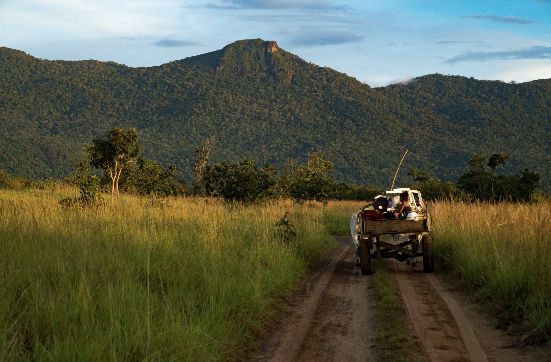 Guyana's Birding Secrets